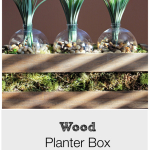 Wood Planter Box – Monthly DIY Challenge