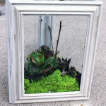 DIY Faux Succulent Garden using Dollar Store Frames – Monthly DIY Challenge