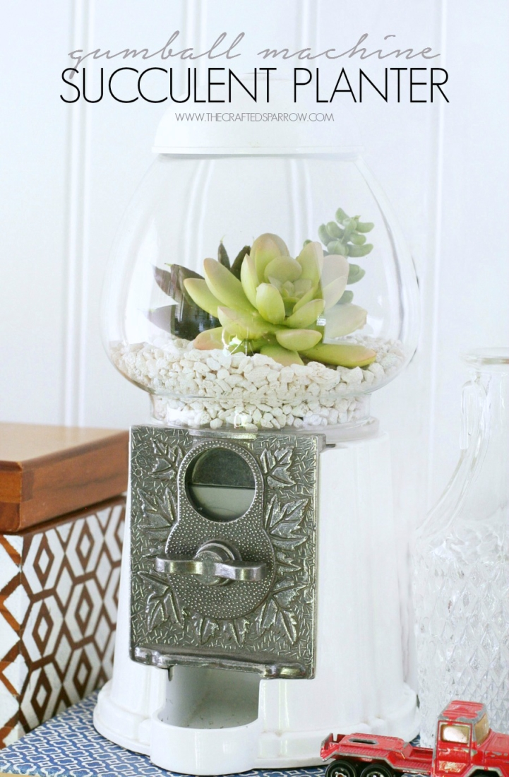 Gumball-Machine-Succulent-Planter-