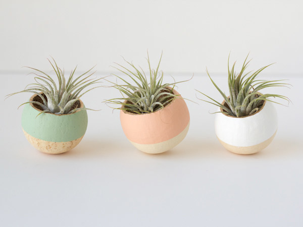 diy-air-plant-holders5